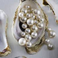 fresh pearls
