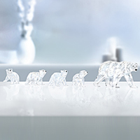 Swarovski Polar Bear Crystal Figurines
